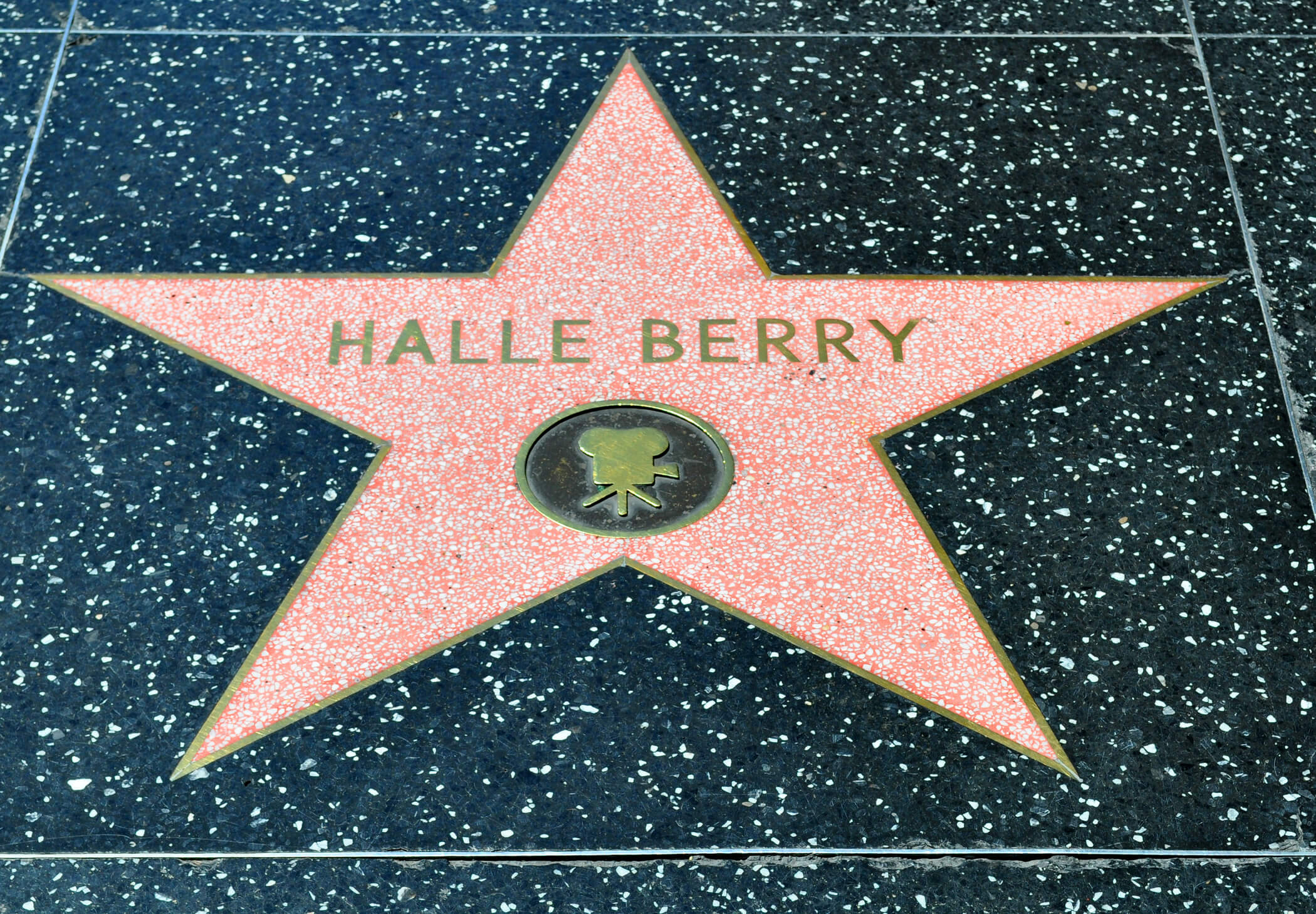 Hollywood Day Tour
